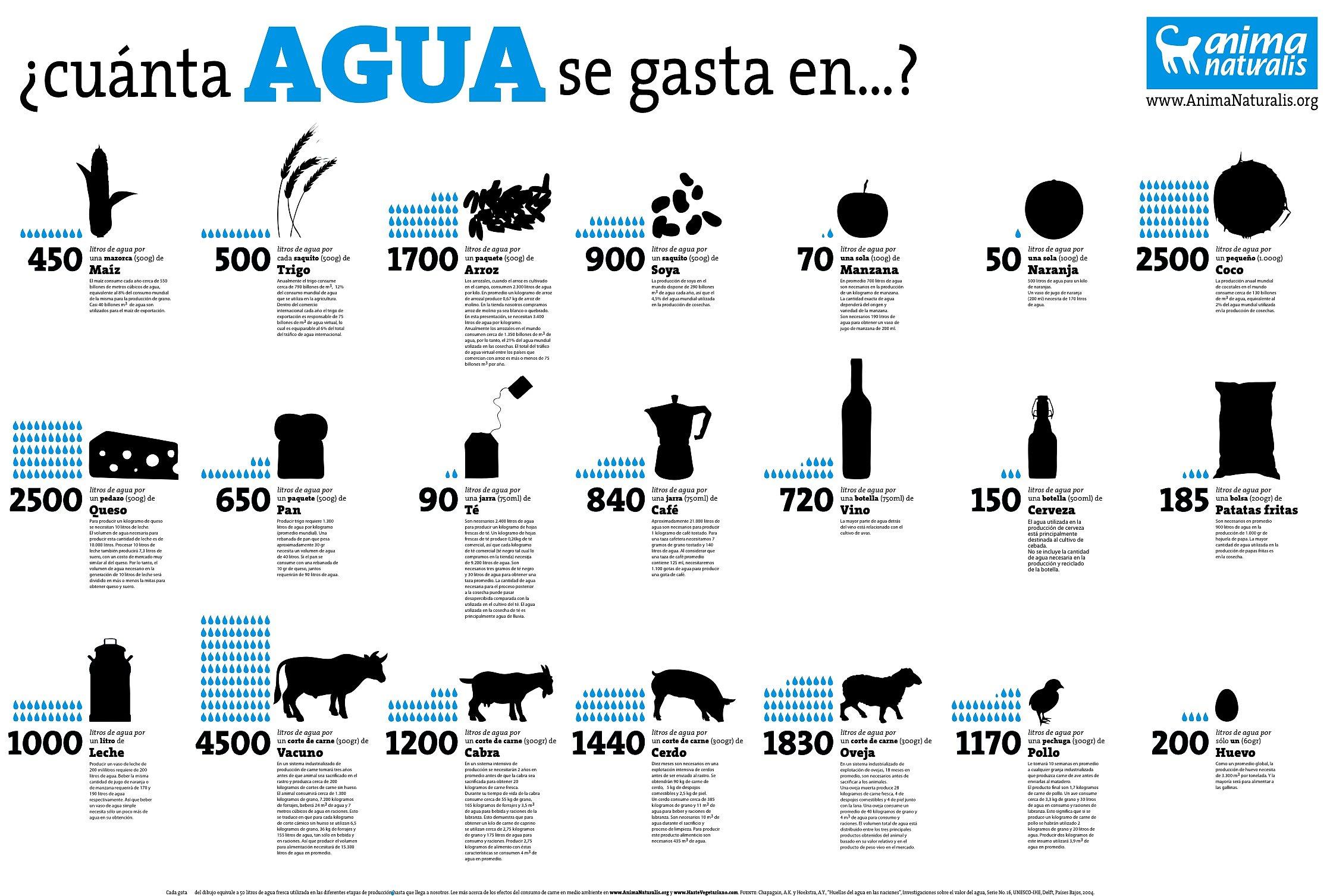 Agua y ganadería | HazteVeg.com