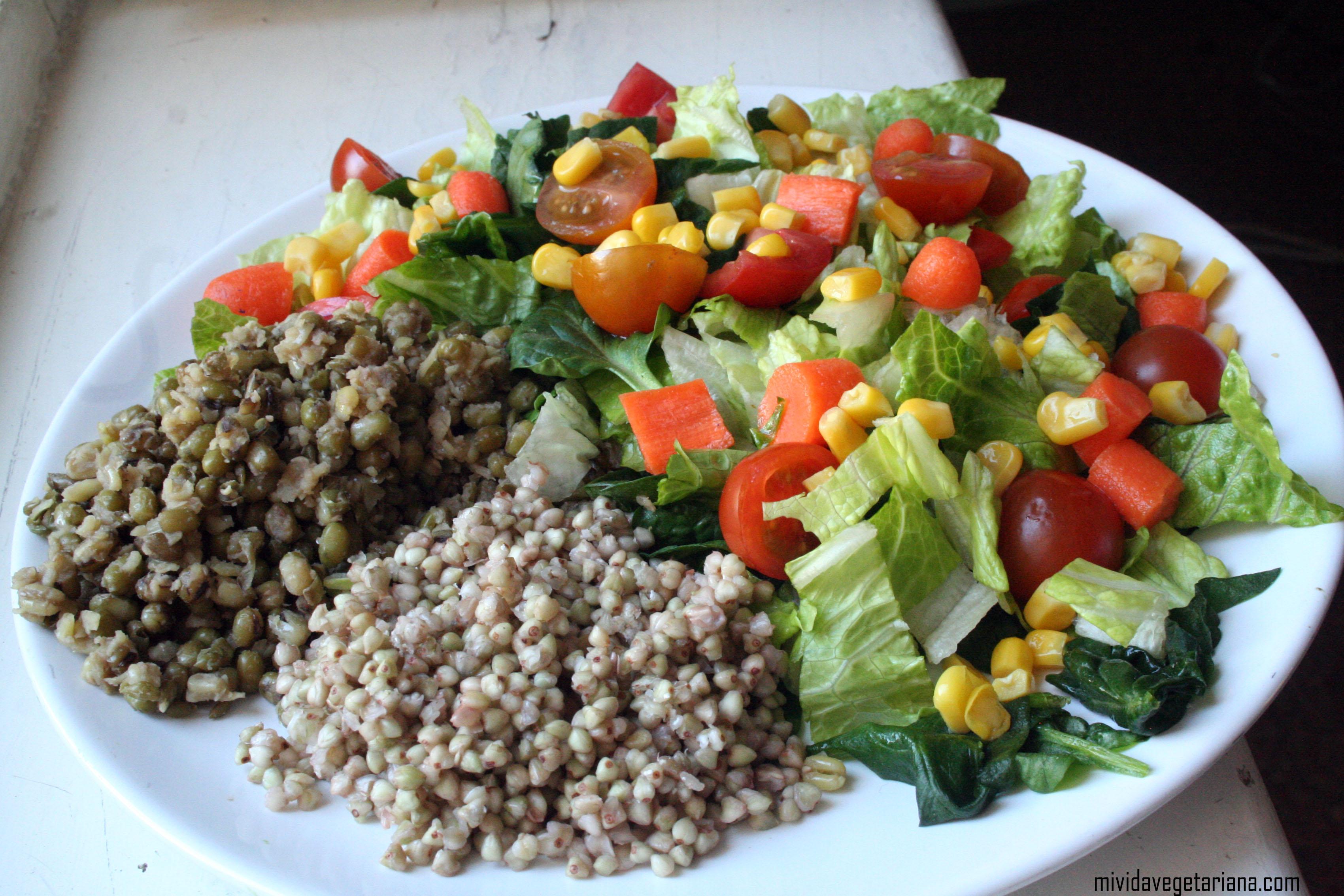 Ensalada de jud as mungo y trigo sarraceno platos - Tiempo de coccion de judias verdes ...